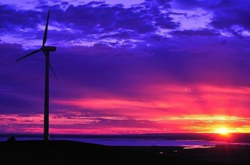 Toora Wind Farm sunset